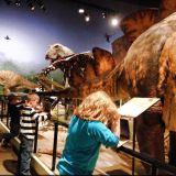 dinos creation museum