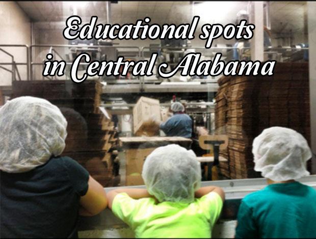cd-educational-spots