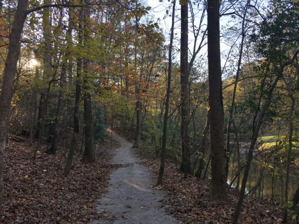Irondale Furnace Trail 7 dedman