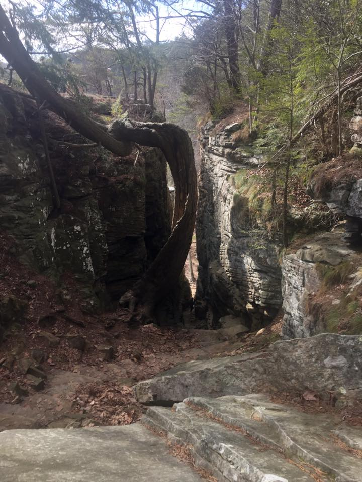 hiking great stone door dedman