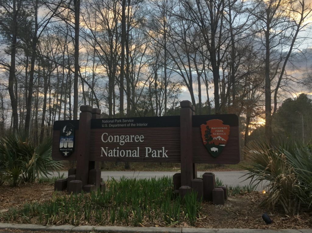 congaree national park dedman 10
