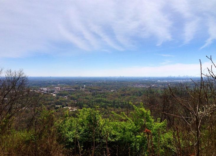 kennesaw mtn view dedman